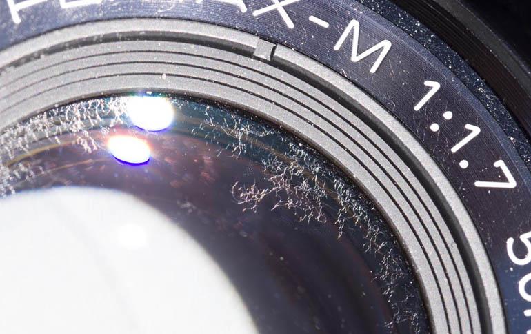 Fungus on lens